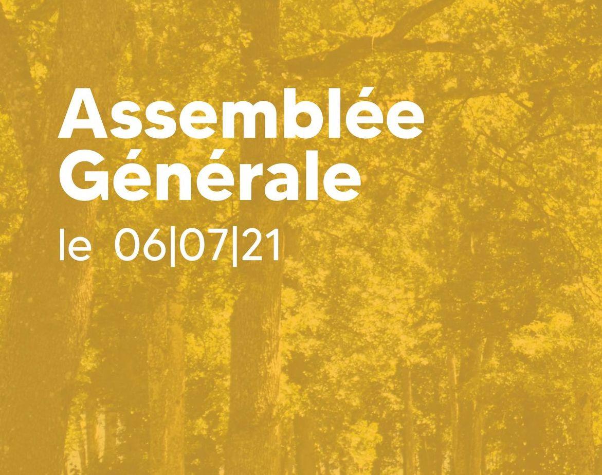 assemblée_générale