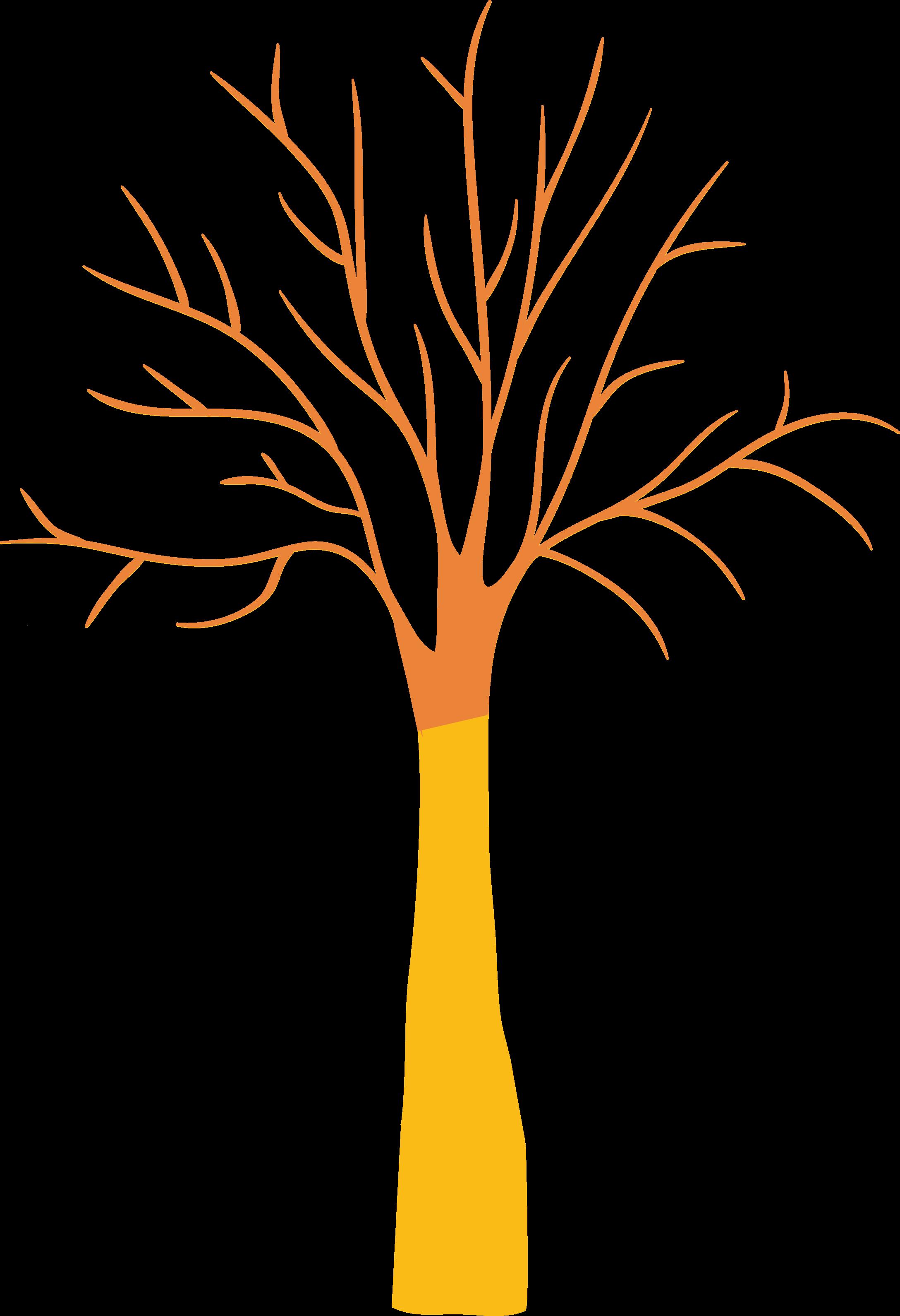 arbre-utilisation